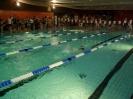 Nikolausschwimmen Bocholt